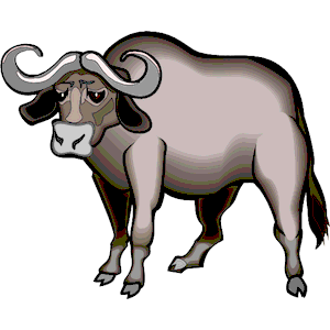 Water Buffalo clipart, cliparts of Water Buffalo free download (wmf.