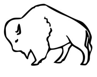 Buffalo wall decal.