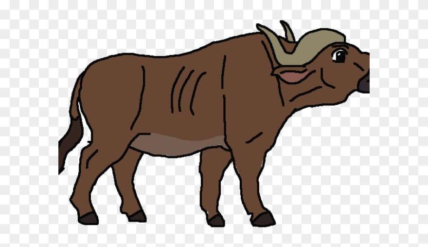 African Buffalo Clipart Wild Buffalo.