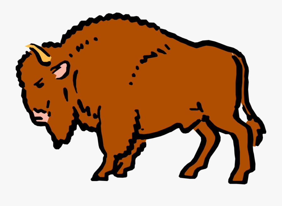 Cartoon Buffalo.