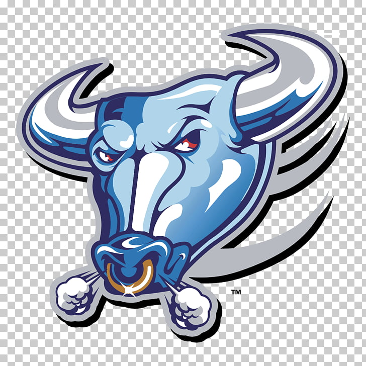 Buffalo Bulls football Buffalo Bills Logo, bull PNG clipart.