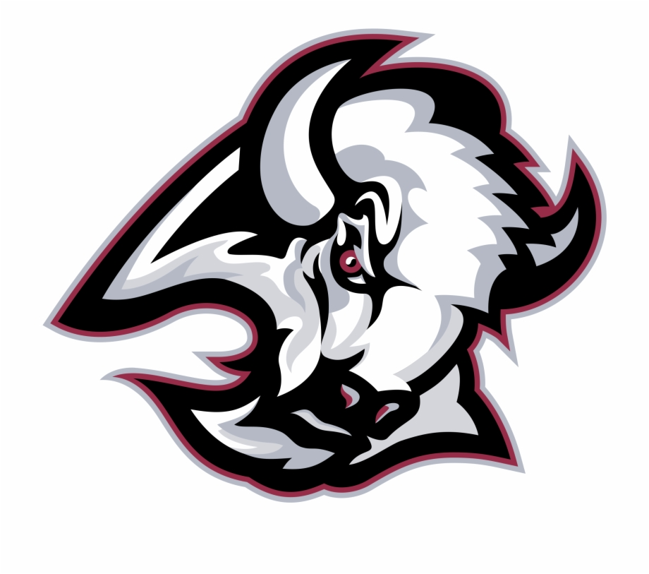 Buffalo Sabres 02 Logo Png Transparent.