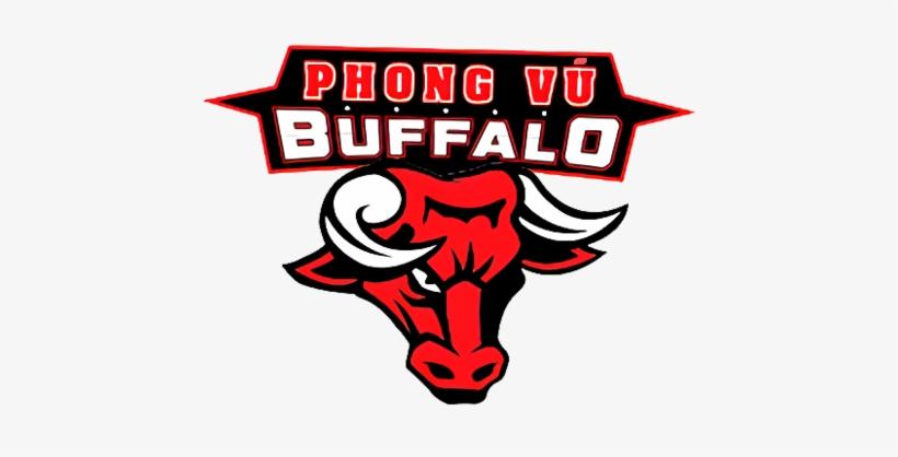 Lol Logo Phong Vũ Buffalo.