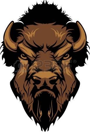 7,898 Buffalo Cliparts, Stock Vector And Royalty Free Buffalo.