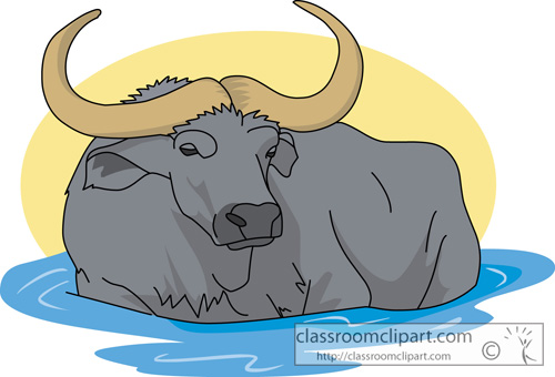 Buffalo clip art free clipart images.