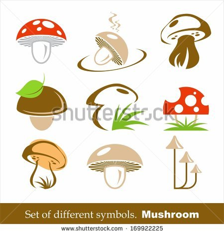 Free Stock Photo of Mushroom In The Grass.