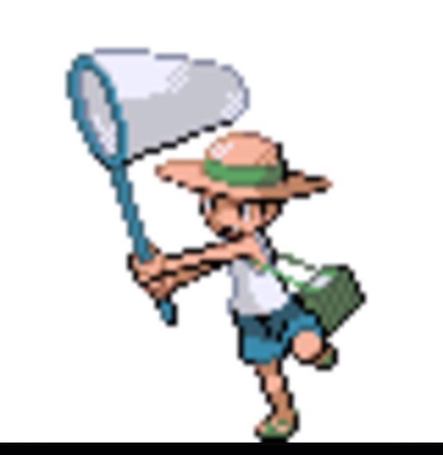 Bug catcher.