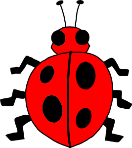 Red Bug Clipart.