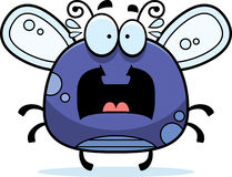 Scared Bug Clipart.