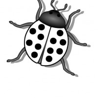 bug clipart black and white.