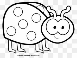Free PNG Bug Black And White Clip Art Download.