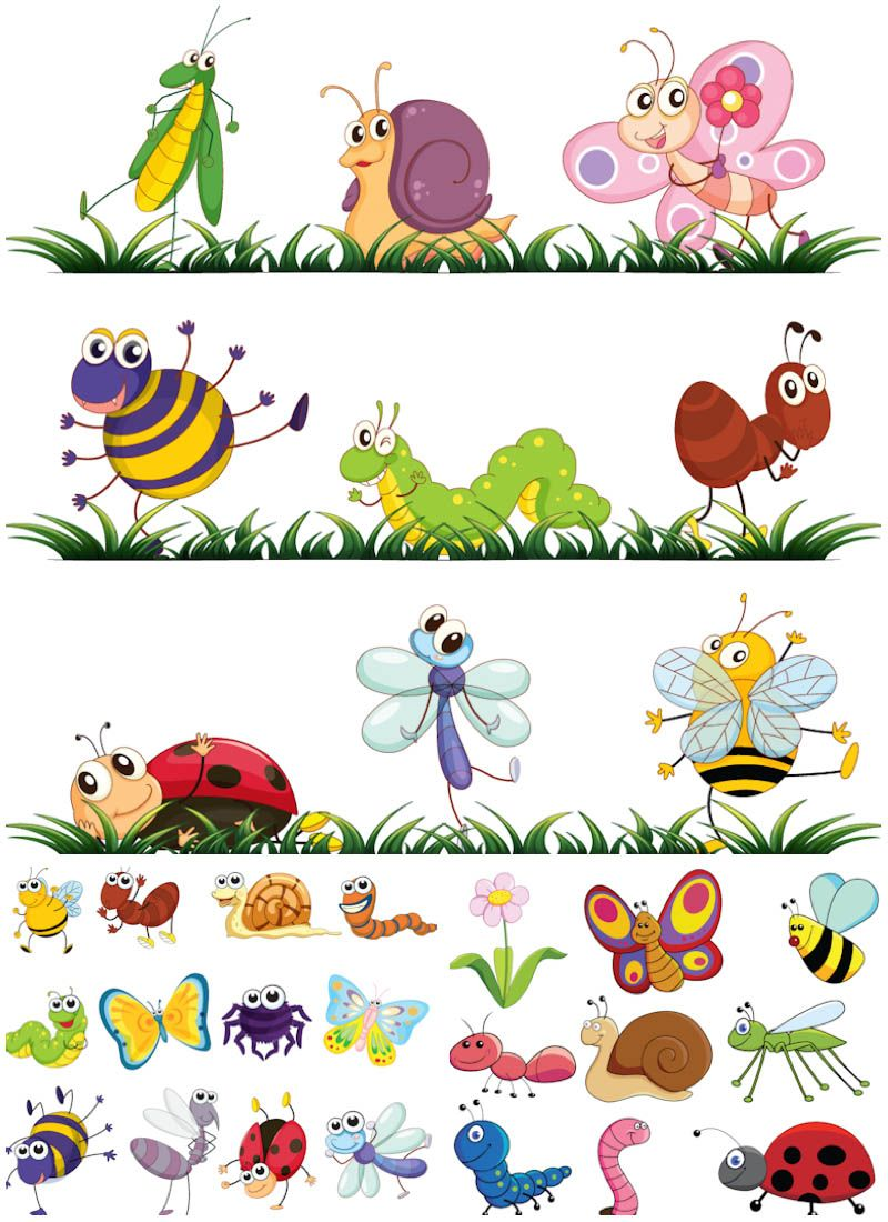 Cartoon insects vector.