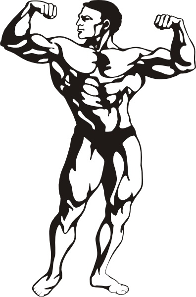 Body Builder clip art Free vector in Open office drawing svg.
