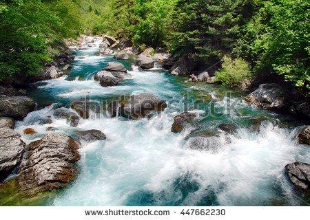 Cartera de Photomarine en Shutterstock..