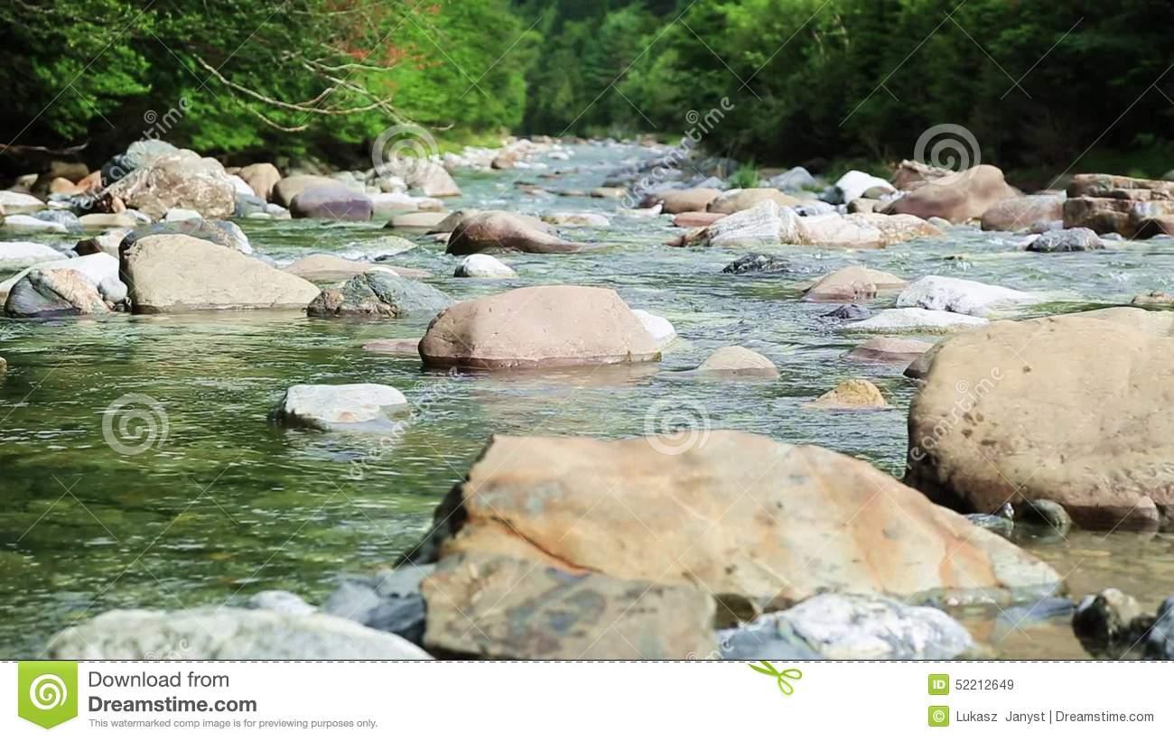 Rio Ara River Bujaruelo In Valle De Ordesa Valley Pyrenees Huesca.