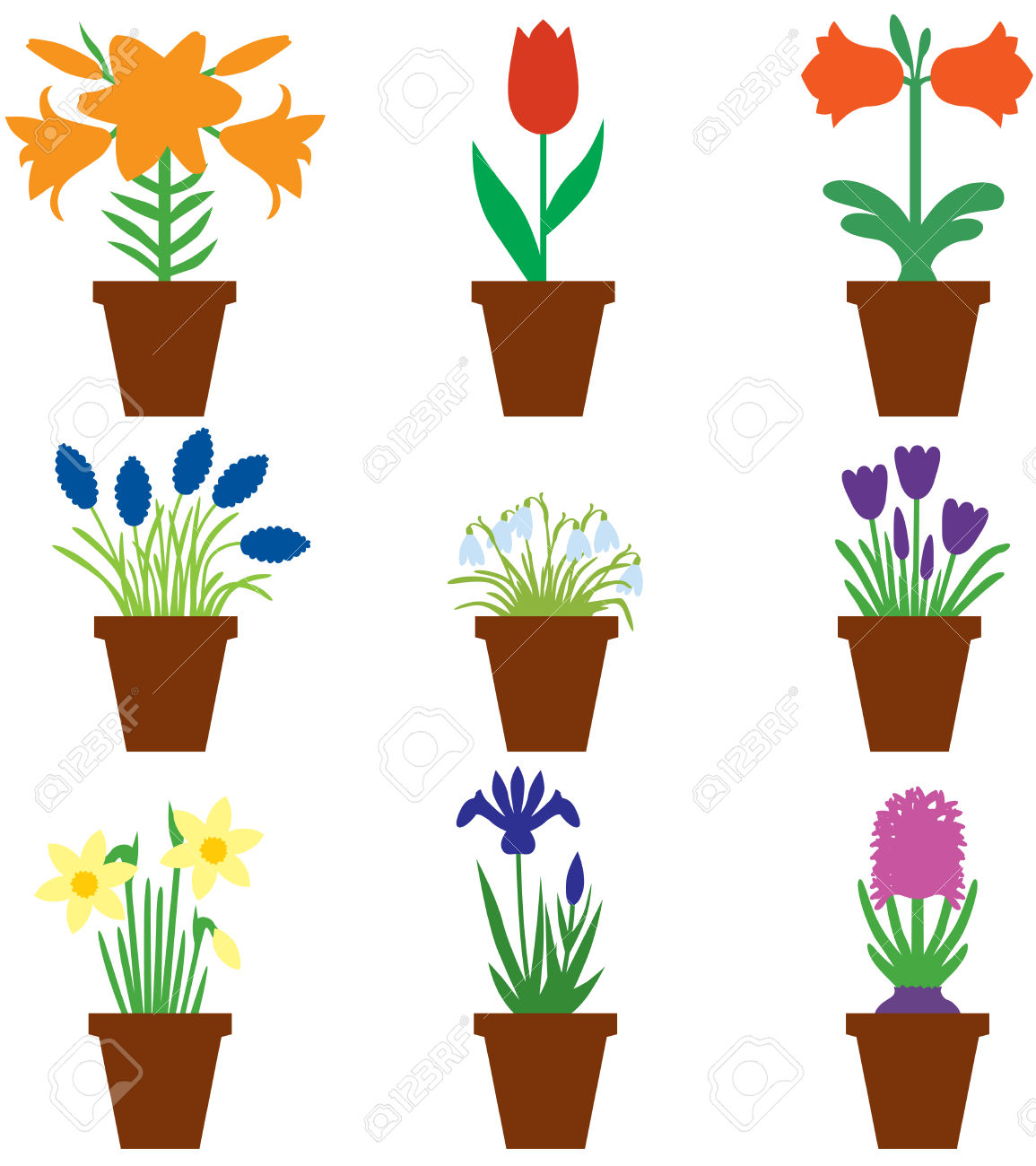 Set Of Color Images Of Bulbs Flower In Pots Royalty Free Cliparts.
