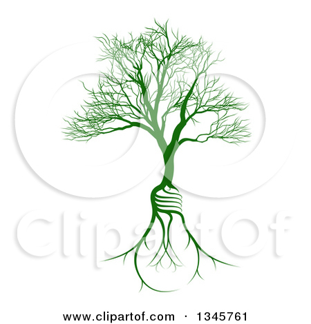 Clipart of a Bare Tree with Light Bulb Shaped Roots.