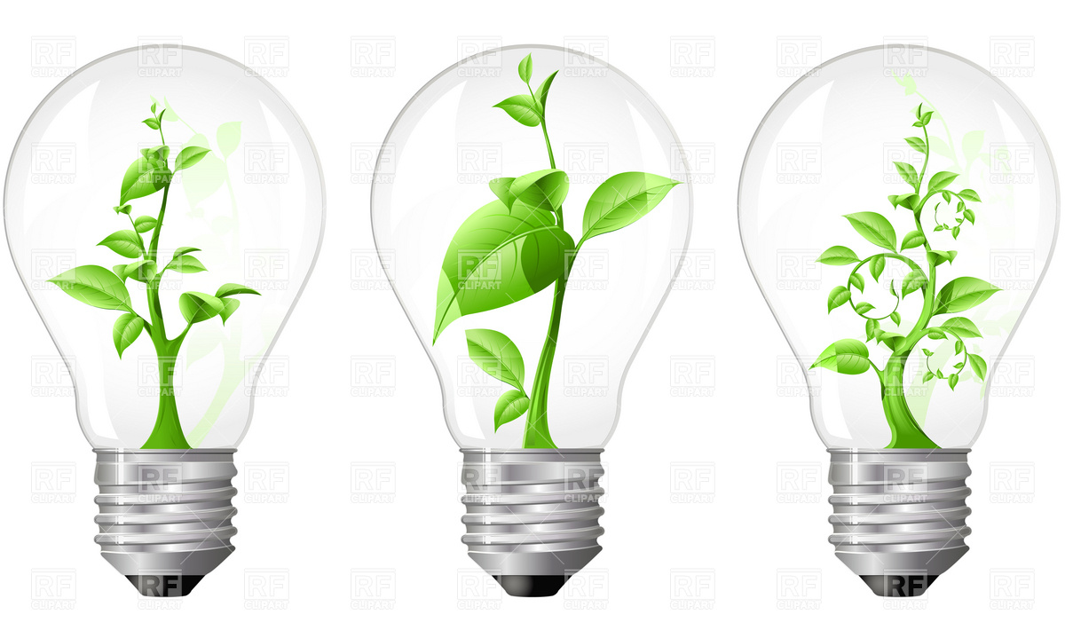 Light Bulb with sprout inside Vector Image #4835.