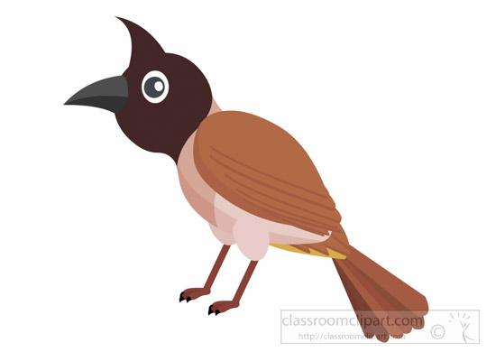 Bird Clipart : bulbul.