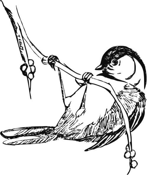 Chickedee Bird Clip Art at Clker.com.