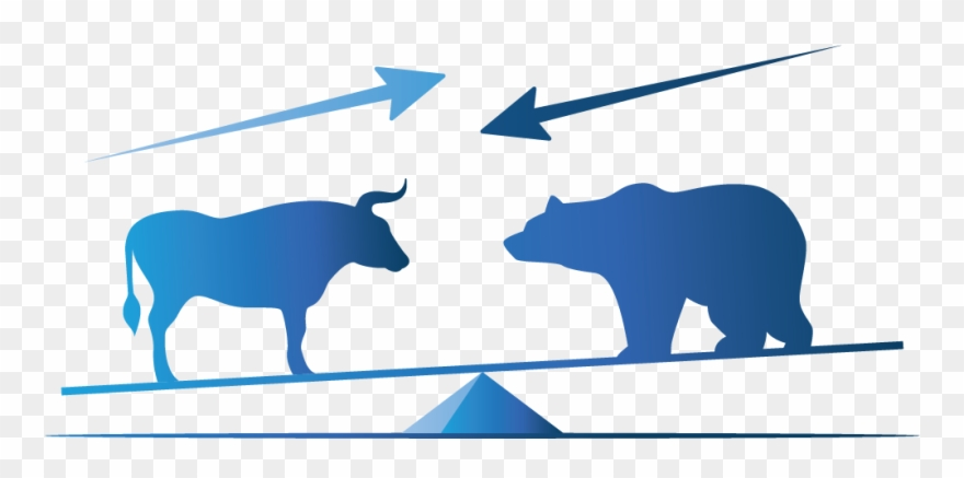 Bull And Bear Markets.