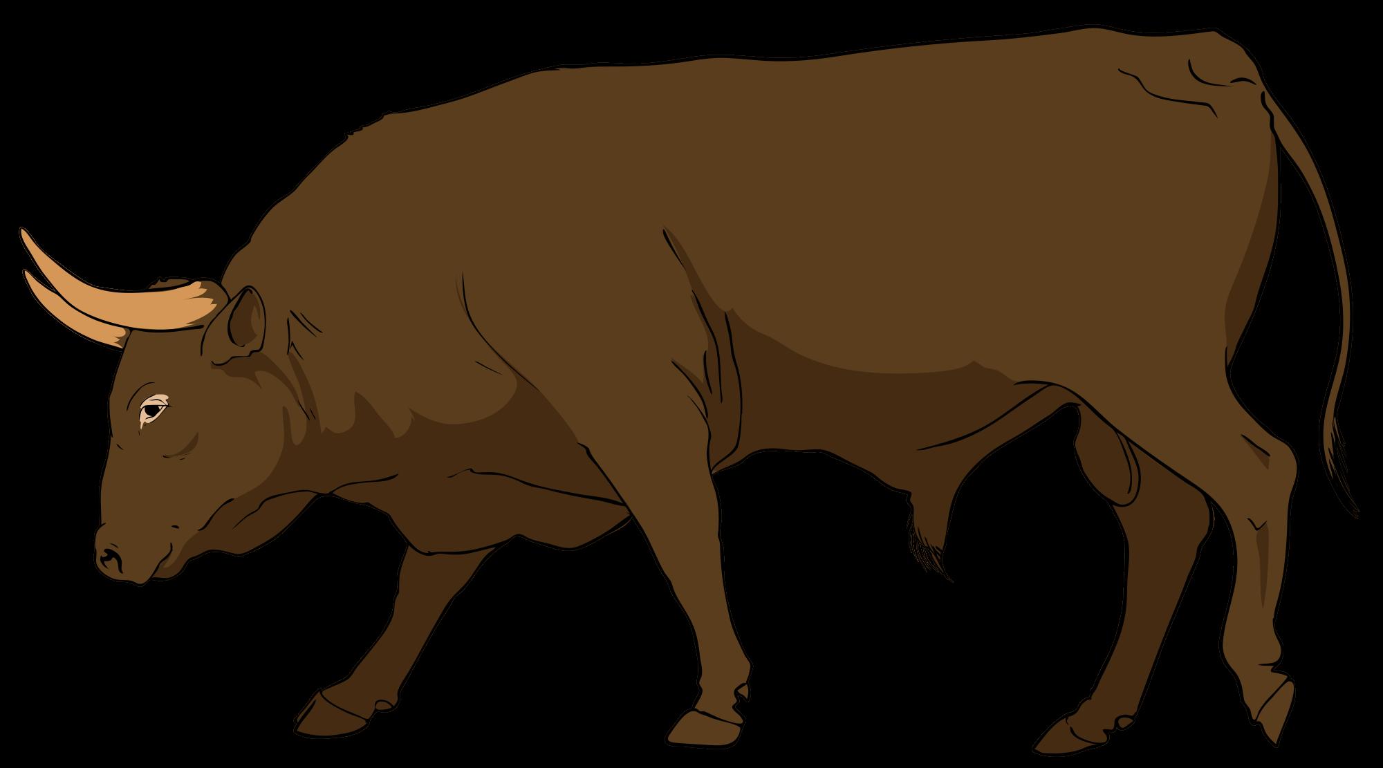 Bull Clipart & Bull Clip Art Images.