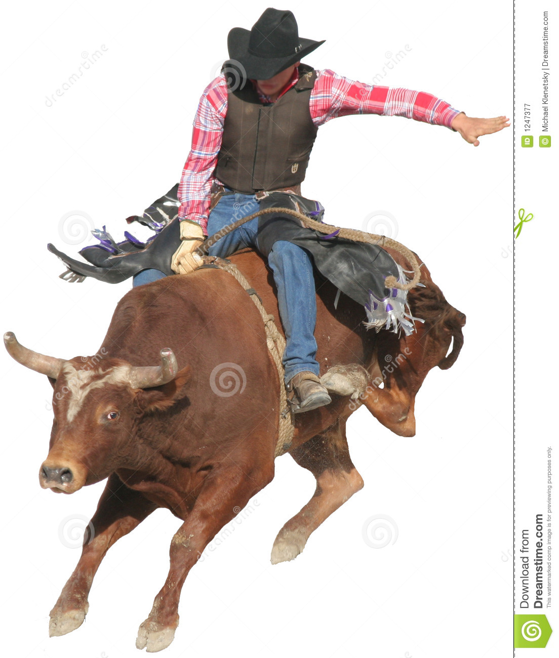Bull Rider stock image. Image of competition, extreme.