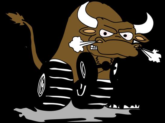 Bull Run Raceway.