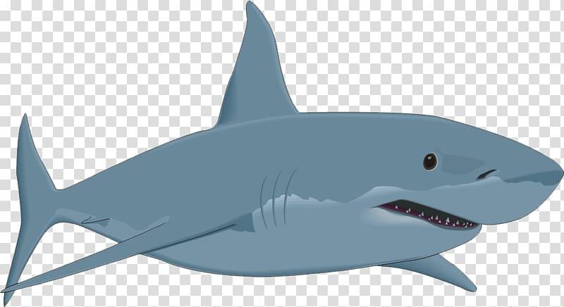 Great white shark illustration, Bull shark , shark,shark.