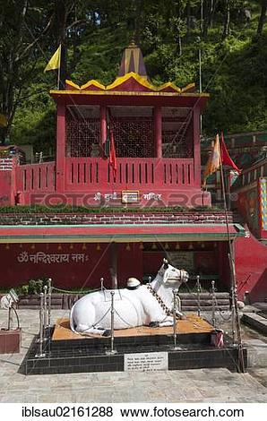Pictures of Hinduism, Nandi bull, Hindu Temple, Kirateshwar.