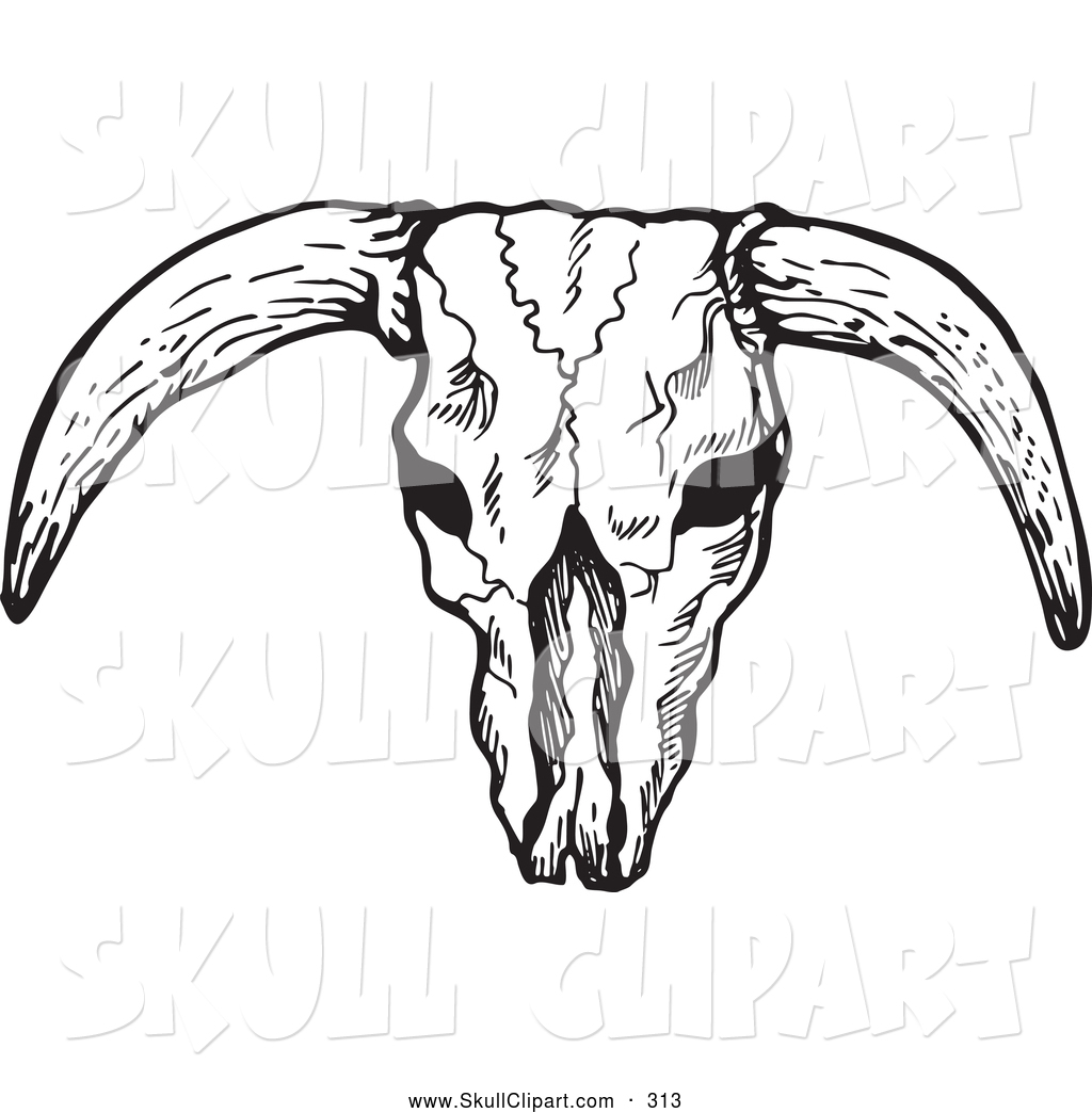 Vector Clip Art of a Black and White Bleached Bull Skull.