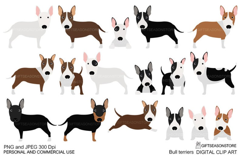 Bull terriers digital clip art for Personal and Commercial use.