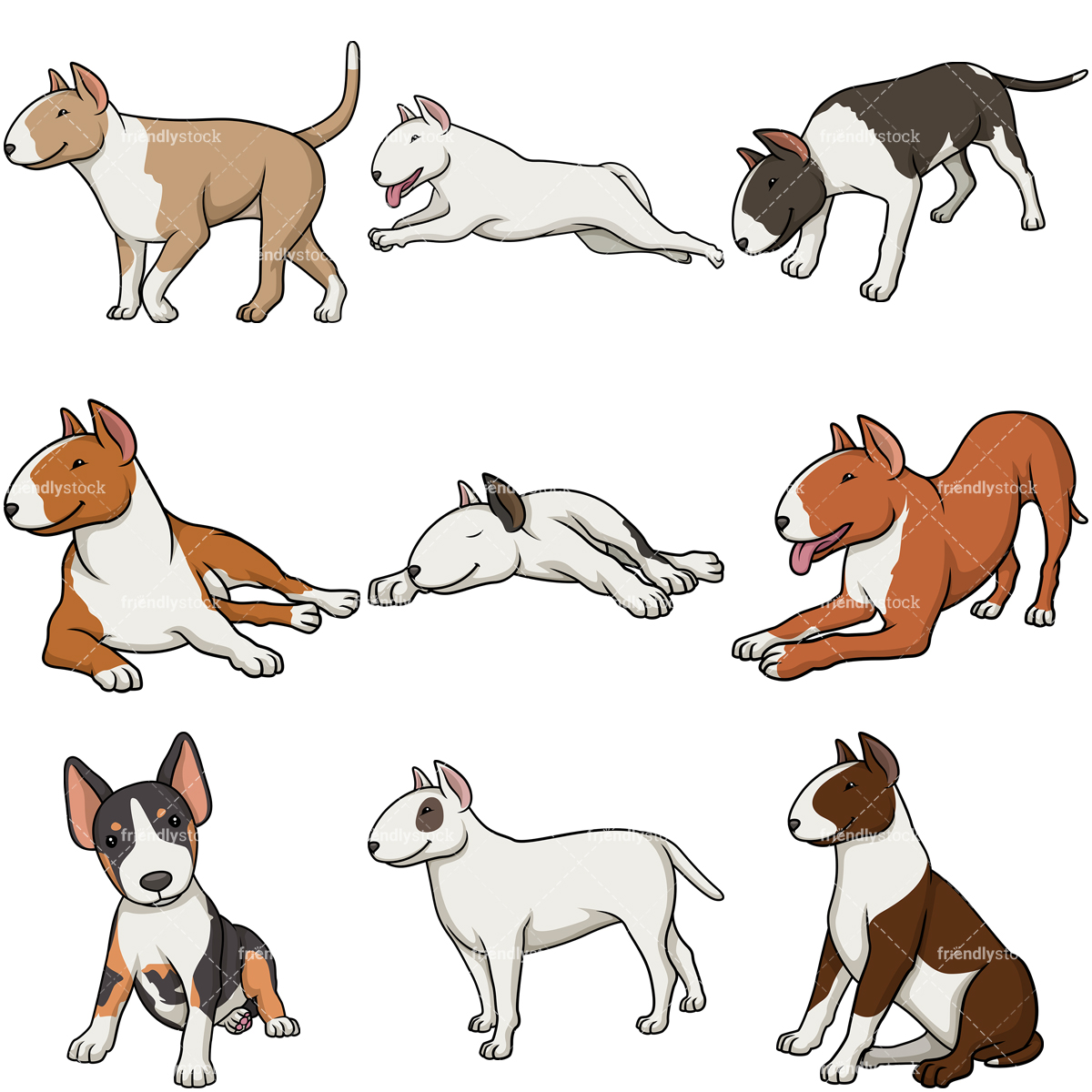 Bull Terrier Dogs Collection.