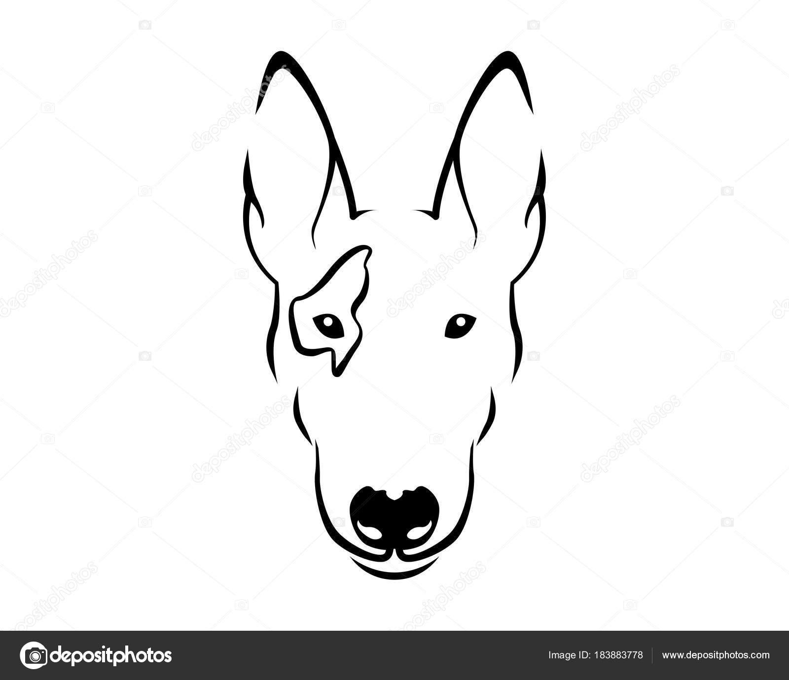 Bull terrier clip art.