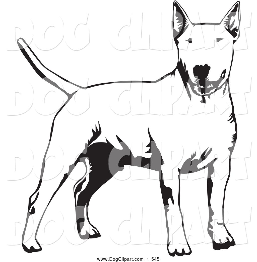 Bull terrier dog clipart.