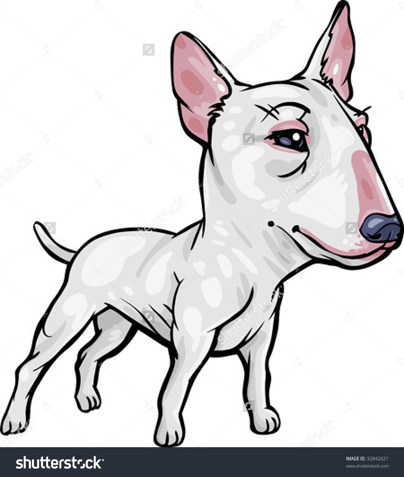 Vector, Clip Art, Caricature Illustration Of Bull Terrier Dog.
