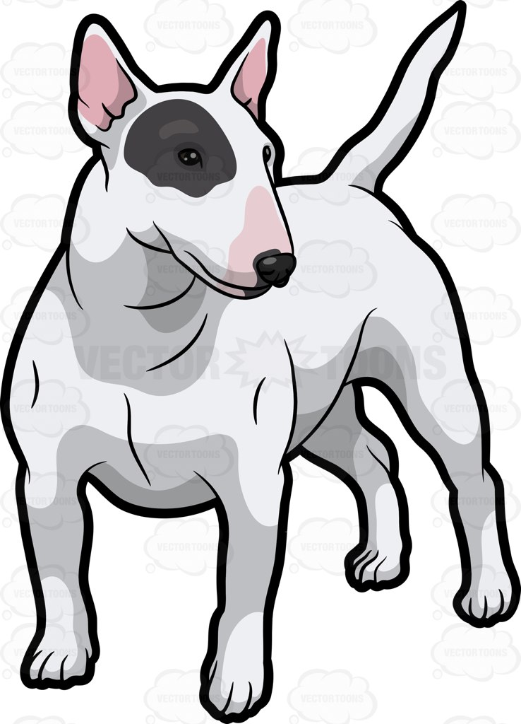 A White Bull Terrier With A Black Patch Over One Eye Cartoon Clipart.