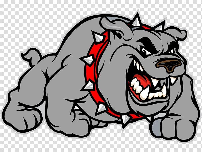 Gray bulldog illustration, Bulldog Logo Uga , georgia.