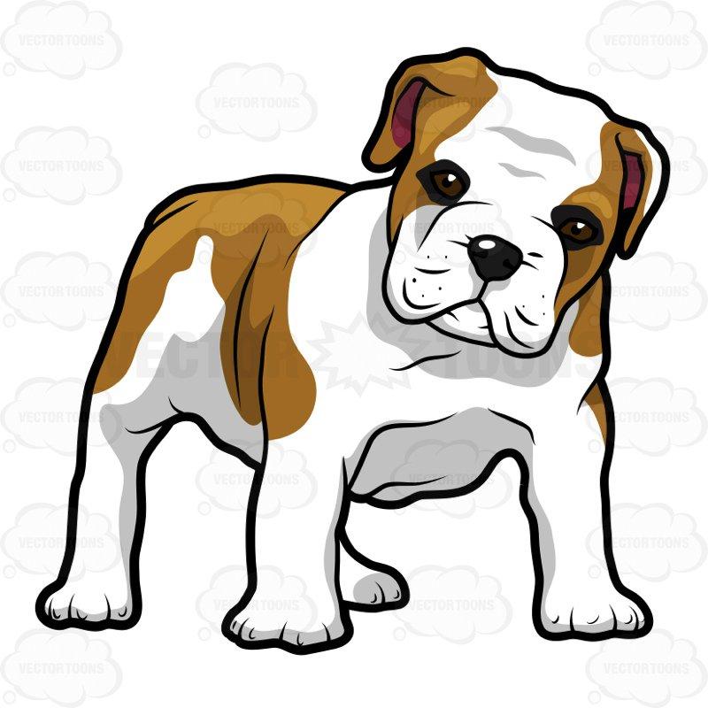 English Bulldog Puppy Clipart.