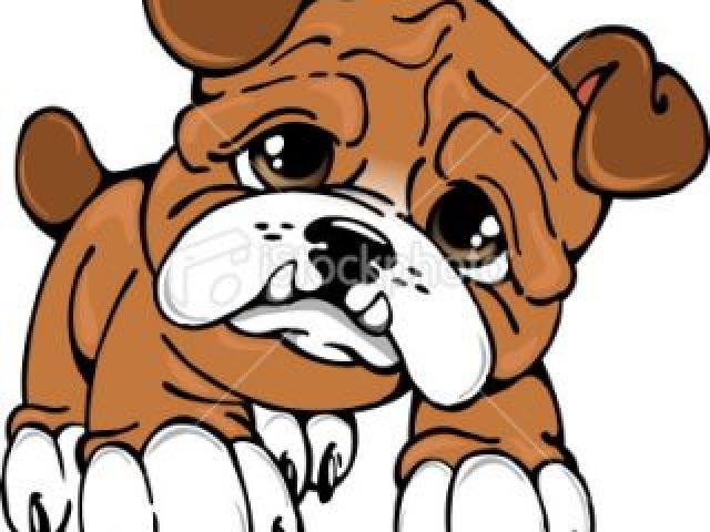 Cavachon Puppy Cliparts Free Download Clip Art.