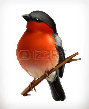 1,153 Bullfinch Icon Stock Vector Illustration And Royalty Free.