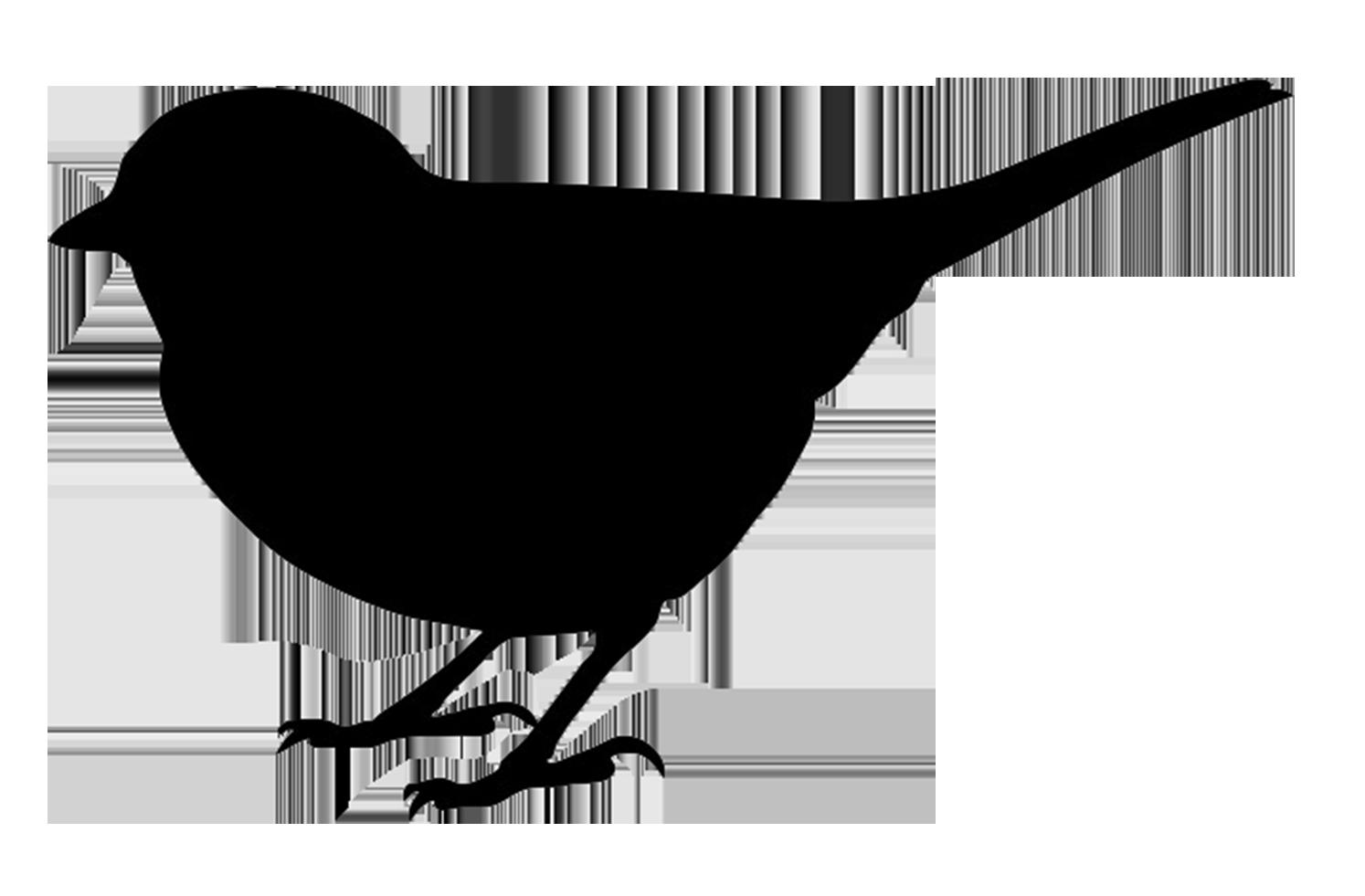Bird Silhouette Clip Art & Bird Silhouette Clip Art Clip Art.