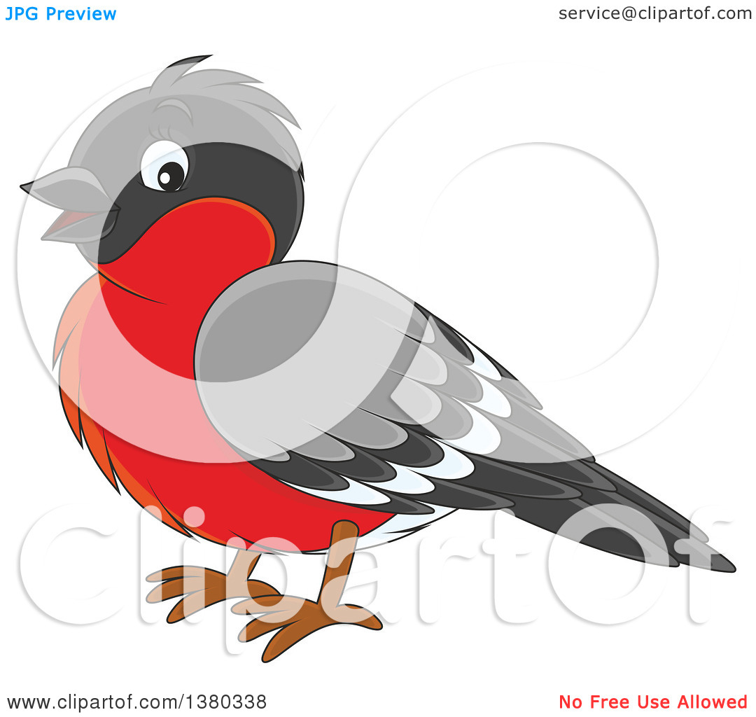 Clipart of a Cute Bullfinch Bird.