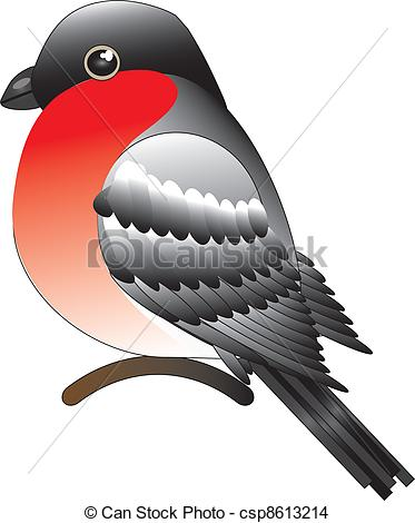 EPS Vector of bullfinch.