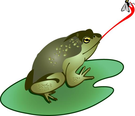 Bullfrog Clip Art Download.