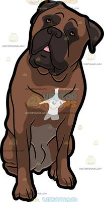 mastiff Cartoon Clipart.