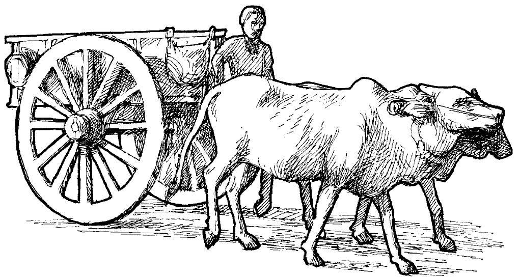 Indian bullock cart clipart.