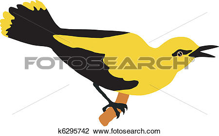 Clipart of oriole k6295742.