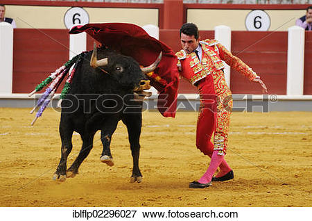 "Picture of ""Bullfighting, Matador with muleta, fighting bull."