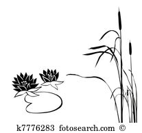 Bulrushes Illustrations and Clipart. 147 bulrushes royalty free.